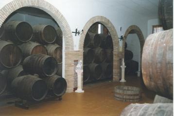 Bodega Vinos de Anora