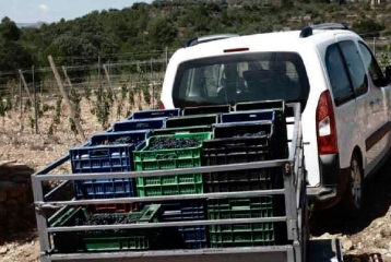 Bodegas Besalduch & Valls - El transporte