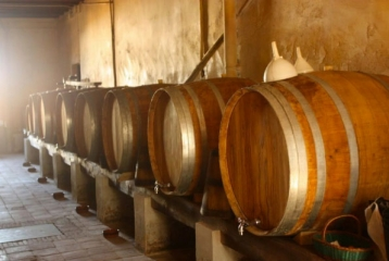 Celler Can Roda - Barricas
