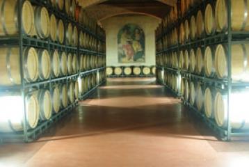 Bodegas Francisco Gómez - Sala de Barricas: 1500 barricas custodiadas por 33 frescos que representan la historia y evolución de la cultura enológica.