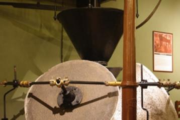 Bodegas Francisco Gómez - Museo del Aceite: con una almazara antigua restaurada podemos conocer los mecanismos utilizados antaño para la extracción del preciado oro líquido.