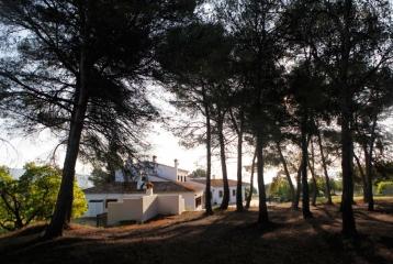 Finca Santa Elena - Pinada