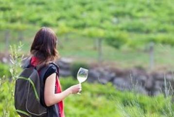 Ruta del Vino Rías Baixas - Ruta del Vino Rías Baixas