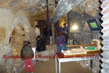Bodega-Aula de Interpretación (Museo del vino) -