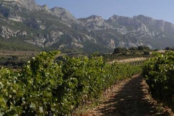 Ruta del Vino de Rioja Alavesa - Ruta del Vino Rioja Alavesa