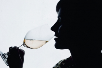 Ruta del Vino Somontano - Somontano