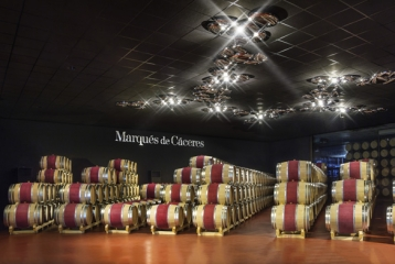 Marqués de Cáceres - Sala barricas