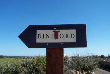 Vinyes Binitord