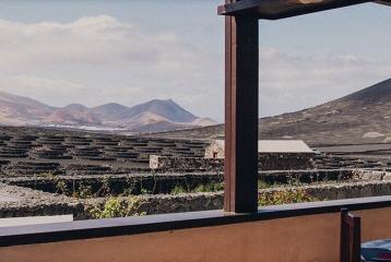 Bodegas Rubicón - Terraza restaurante