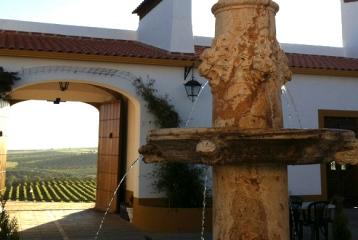 Hotel-Bodega El Moral - Hotel-Bodega El Moral