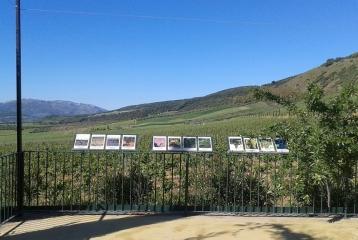 Bodegas Morosanto - Terraza