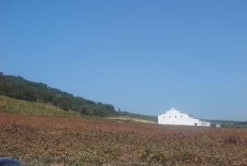 Bodegas Morosanto - Exteriores