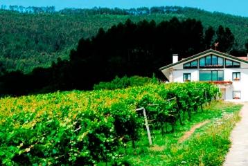 Bodega Basarte - Bodegas Basarte, vistas exteriores