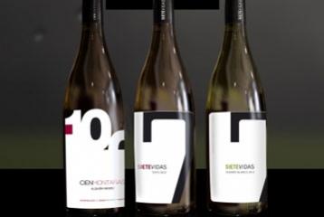 Bodega Vidas - Los vinos