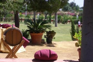 Hotel Hacienda Los Jinetes - Jardines