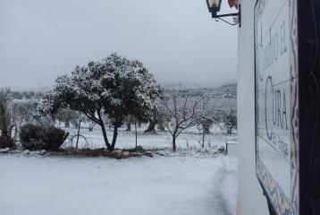 Cortijo el Cura Eco-bodega - Nevada en Cortijo El Cura