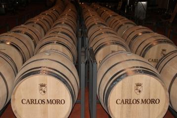 Bodega Carlos Moro - Barricas bodega