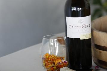 Bodega Campo Eliseo - En sus instalaciones de La Seca, Campo Eliseo elabora sus vinos blancos de alta gama: Campo Alegre verdejo y Campo Eliseo verdejo.