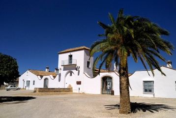 El Colmao Wine and Experiences -