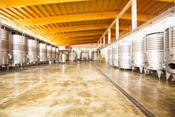 Bodegas Vi Rei - Sala de fermentación