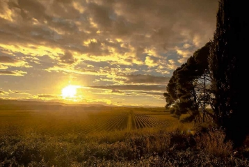 Rioja Vega -