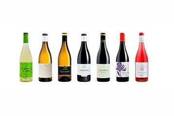 Viñedos y Bodega Pardevalles - Vinos