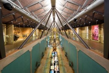 Pagos del Rey Museo del Vino  -