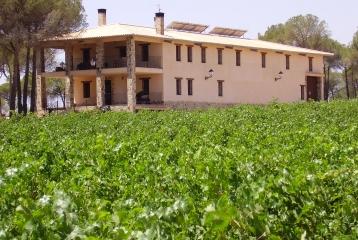Bodega Vitis Natura  - Bodega Vitis Natura vinos y enoturismo ecológicos