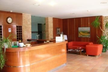 Hotel ATH Ribera del Duero - Recepción