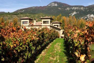 Hospedería del Vino - Vista desde los viñedos