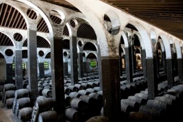 Bodegas Barbadillo y Museo de la Manzanilla -