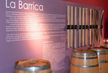 Bodega - Museo del Vino Emina Ribera - Museo del Vino