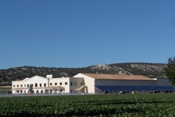 Oficina de Enoturismo de Valladolid - Centro de Interpretación Vitivinícola Emina- Ruta de Ribera del Duero