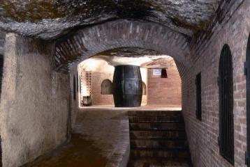 Oficina de Enoturismo de Valladolid - Bodegas Antaño-Ruta de Rueda