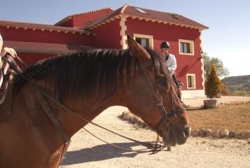 Bodegas Señorío de Bocos - Las excursiones a caballo por el Valle del Cuco tienen una parada obligatoria en Señorío de Bocos.