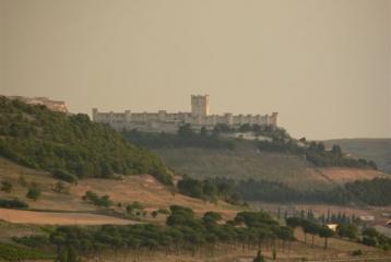 Bodegas Señorío de Bocos - Vista del Castillo de Peñafiel desde la bodega Señorío de Bocos