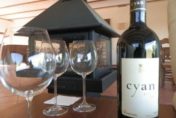 Bodega Cyan - Sala de cata