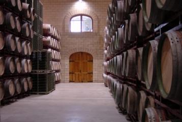 Sala de barricas para crianza de nuestros vinos