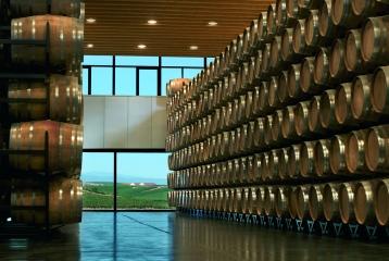 Bodegas Regalía de Ollauri-Marqués de Terán - Sala de barricas desde la que se divisa una majestuosa vista del viñedo