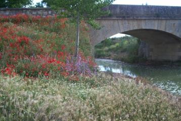 Quinta del Canal - Puente sobre Canal de Castilla