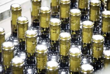 Viñas El Regajal - Botellas