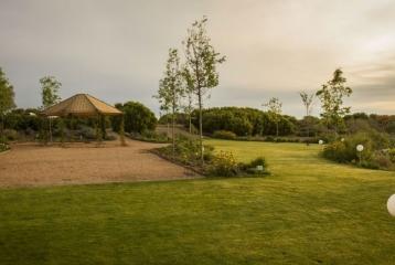 Viñas El Regajal - Jardín exterior