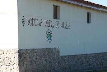 Bodegas Ribera de Pelazas - Detalle fachada