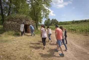Abadal - Visita Ruta Barracas de vinya
