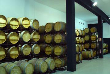 Bodegas y Vinos Máximo Abete