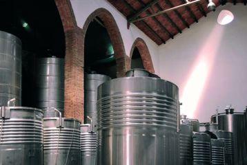 Alella Vinícola Can Jonc - Sala de elaboración.