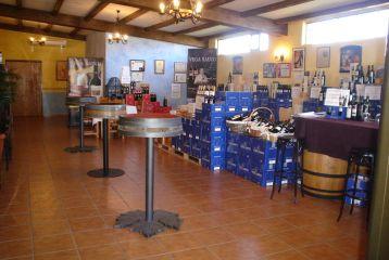 Bodegas Vega Saúco - Tienda. Sala de catas