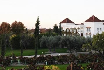 Bodegas y Viñedos Casa del Valle -