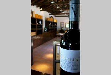 Bodegas y Viñedos Casa del Valle - Botella de Finca Valdelagua