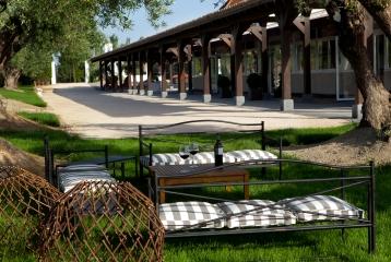 Bodegas y Viñedos Casa del Valle - Jardín de olivos